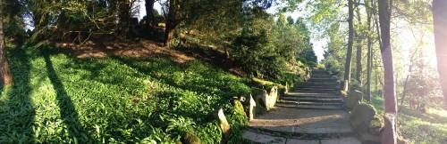 Hornby Castle Gardens